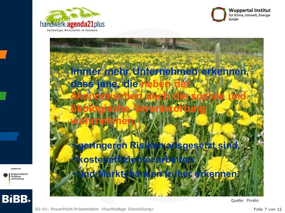B1-A1: PowerPoint-Präsentation »Nachhaltige Entwicklung« Immer mehr Unternehmen erkennen, dass jene, die neben der ökonomischen auch die soziale und ö