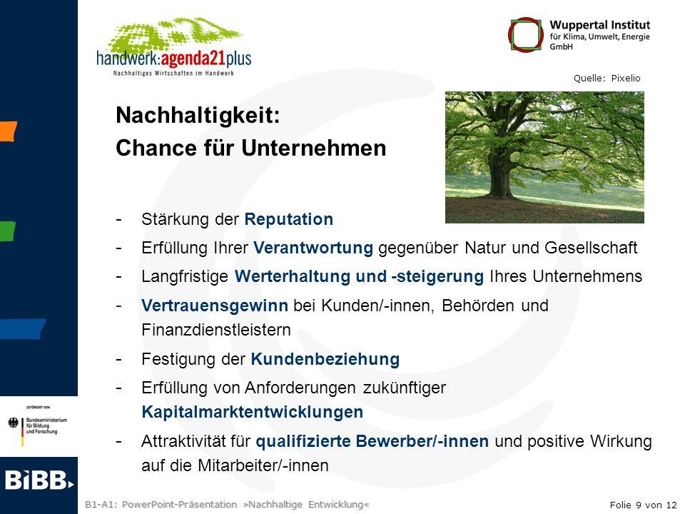 B1-A1: PowerPoint-Präsentation »Nachhaltige Entwicklung« Nachhaltigkeit: Chance für Unternehmen - Stärkung der Reputation - Erfüllung Ihrer Verantwort