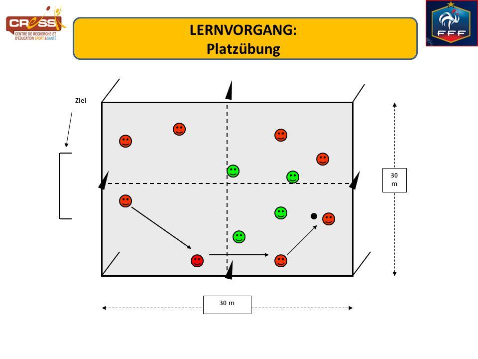 30 m Ziel LERNVORGANG: Platzübung