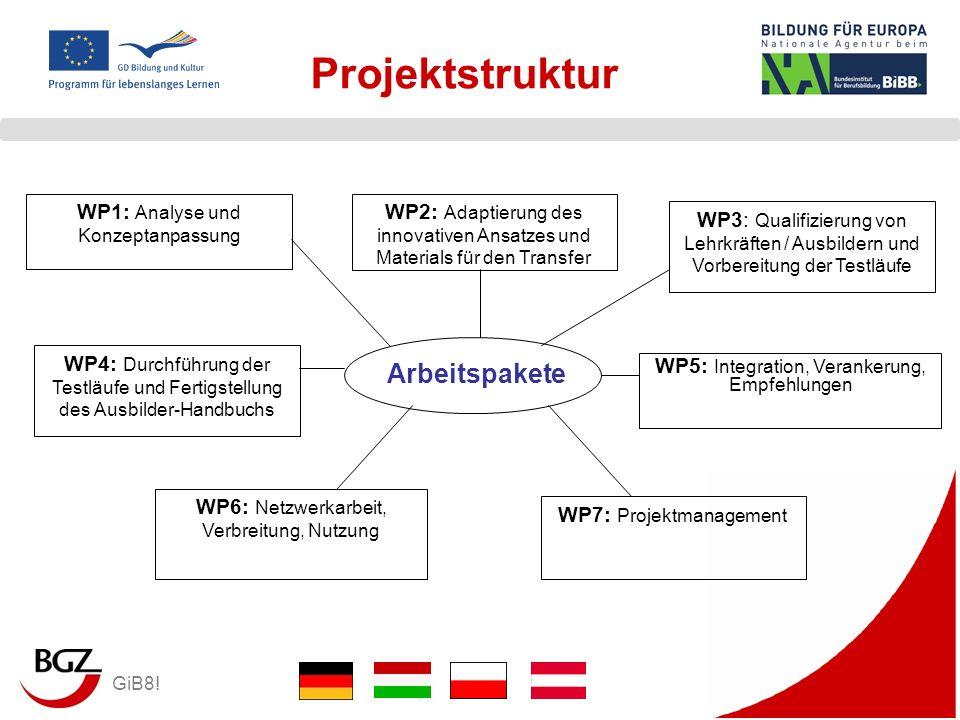 GiB8! Projektstruktur WP1: Analyse und Konzeptanpassung WP2: Adaptierung des innovativen Ansatzes und Materials für den Transfer WP3: Qualifizierung v