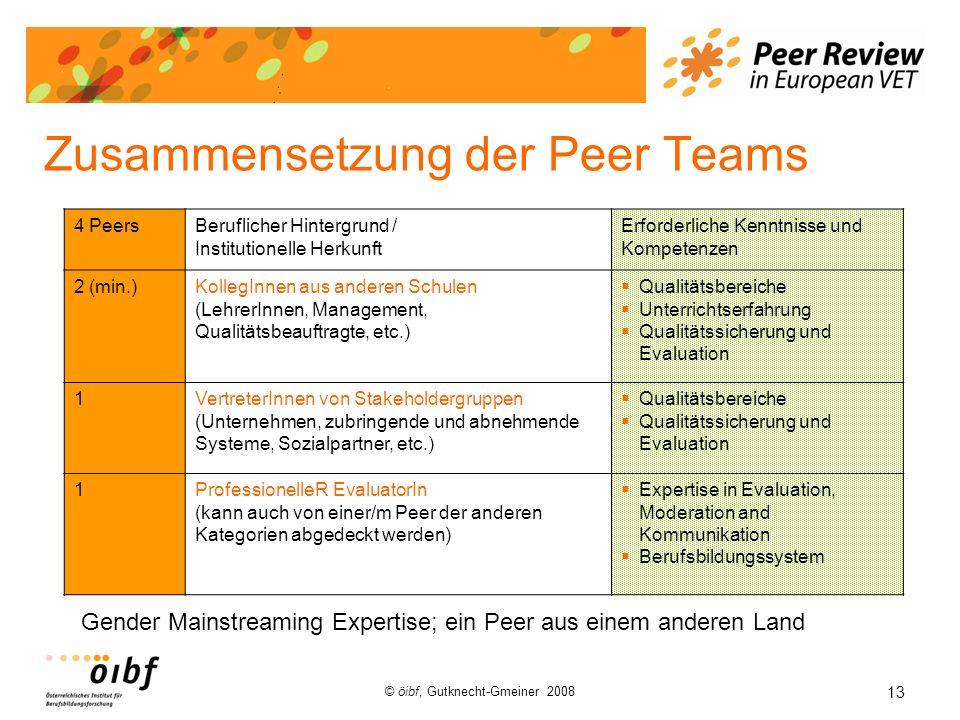 13 © öibf, Gutknecht-Gmeiner 2008 Zusammensetzung der Peer Teams 4 PeersBeruflicher Hintergrund / Institutionelle Herkunft Erforderliche Kenntnisse un
