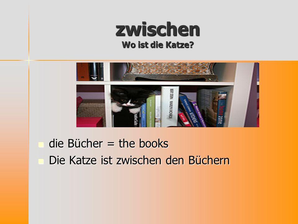 zwischen Wo ist die Katze? die Bücher = the books die Bücher = the books Die Katze ist zwischen den Büchern Die Katze ist zwischen den Büchern