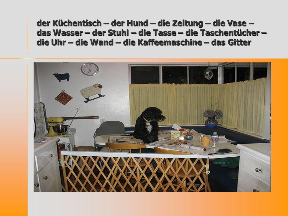 der Küchentisch – der Hund – die Zeitung – die Vase – das Wasser – der Stuhl – die Tasse – die Taschentücher – die Uhr – die Wand – die Kaffeemaschine
