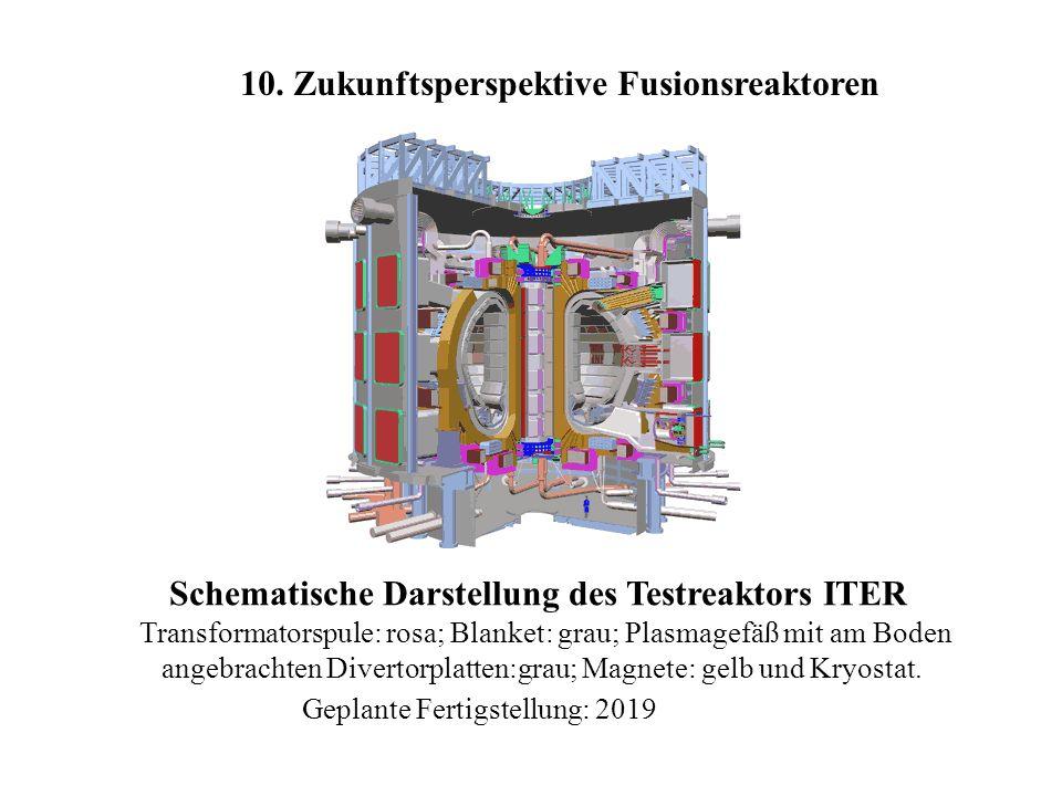 Schematische Darstellung des Testreaktors ITER Transformatorspule: rosa; Blanket: grau; Plasmagefäß mit am Boden angebrachten Divertorplatten:grau; Ma