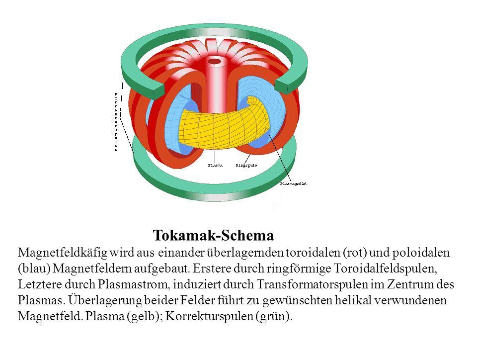 Tokamak-Schema Magnetfeldkäfig wird aus einander überlagernden toroidalen (rot) und poloidalen (blau) Magnetfeldern aufgebaut. Erstere durch ringförmi