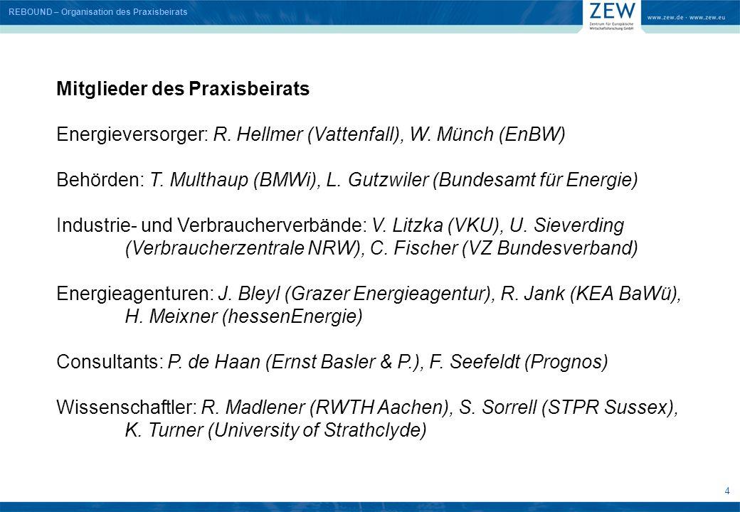 4 Mitglieder des Praxisbeirats Energieversorger: R. Hellmer (Vattenfall), W. Münch (EnBW) Behörden: T. Multhaup (BMWi), L. Gutzwiler (Bundesamt für En