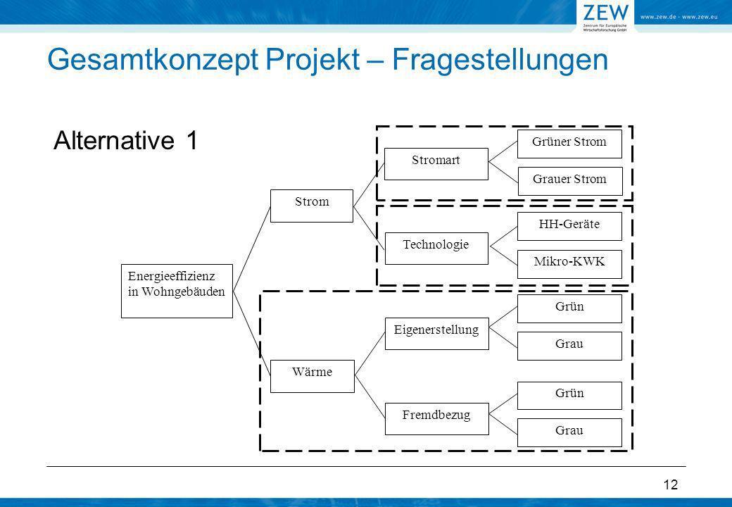 12 Gesamtkonzept Projekt – Fragestellungen Alternative 1 Energieeffizienz in Wohngebäuden Strom Wärme Grüner Strom Eigenerstellung Fremdbezug Technolo