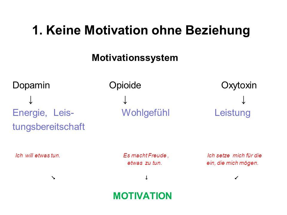 1. Keine Motivation ohne Beziehung Motivationssystem Dopamin Opioide Oxytoxin Energie, Leis- Wohlgefühl Leistung tungsbereitschaft Ich will etwas tun.