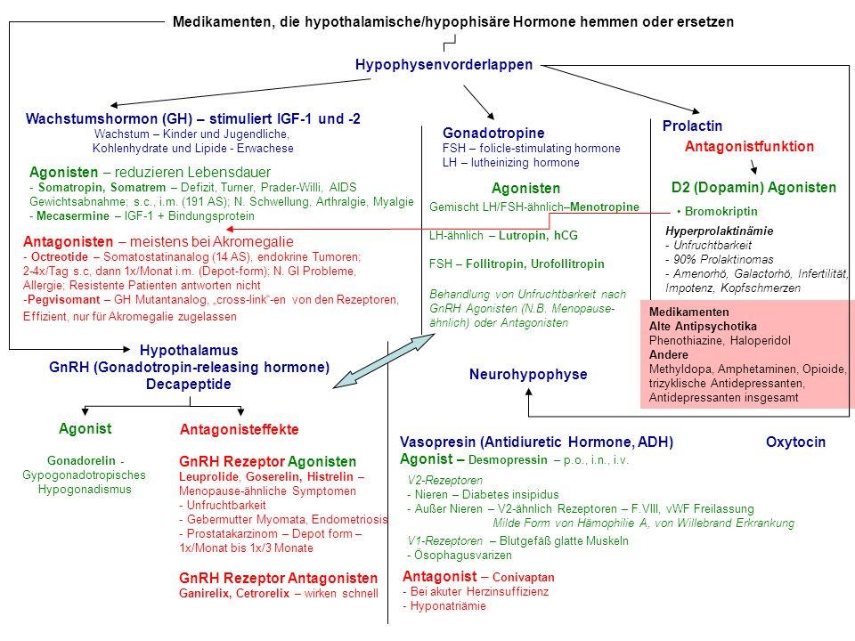 Medikamenten, die hypothalamische/hypophisäre Hormone hemmen oder ersetzen Hypophysenvorderlappen Wachstumshormon (GH) – stimuliert IGF-1 und -2 Wachs