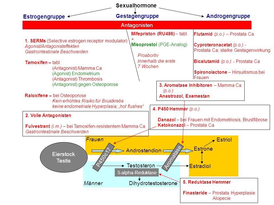 Sexualhormone Estrogengruppe GestagengruppeAndrogengruppe Antagonisten 1. SERMs (Selective estrogen receptor modulator) Agonist/Antagonisteffekten Gas