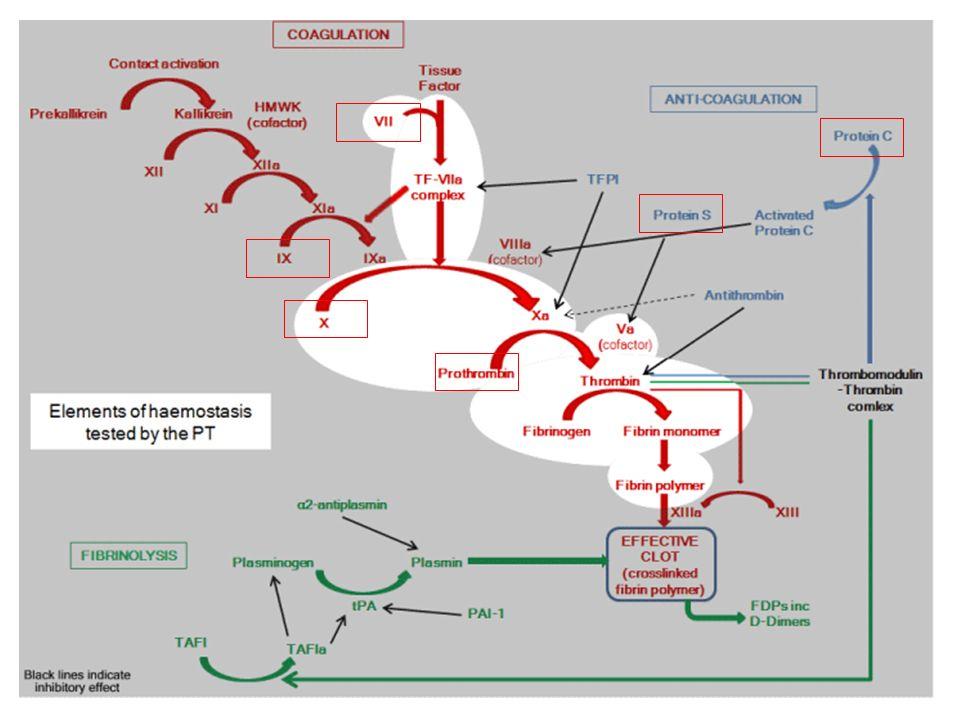 Beta1- und Beta2-Rezeptoren in den Koronarien – beta2 haben fast keine funktionelle Bedeutung ISA – nicht chemisch klar