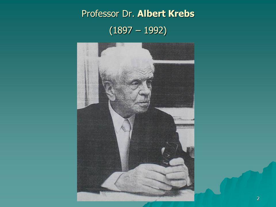 Olaf Filler - JVA Untermaßfeld 2 Professor Dr. Albert Krebs (1897 – 1992)