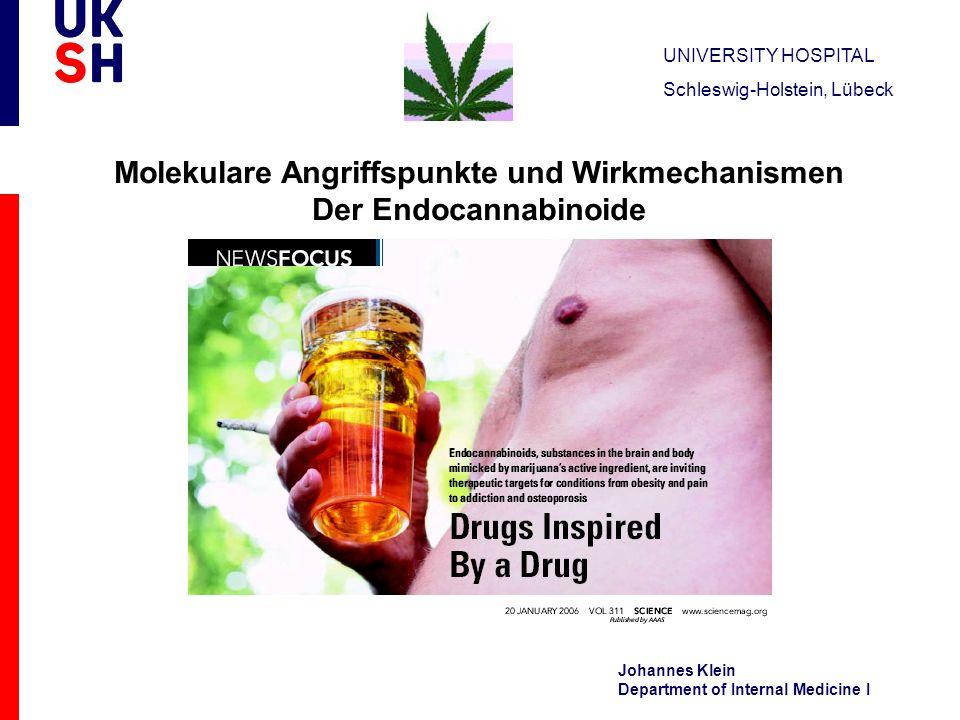 UNIVERSITY HOSPITAL Schleswig-Holstein, Lübeck Johannes Klein Department of Internal Medicine I Molekulare Angriffspunkte und Wirkmechanismen Der Endo