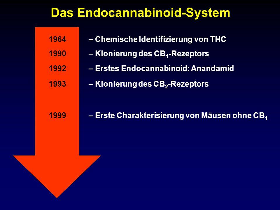 Das Endocannabinoid-System 1990 1992 1993 – Klonierung des CB 1 -Rezeptors – Erstes Endocannabinoid: Anandamid – Klonierung des CB 2 -Rezeptors 1964–