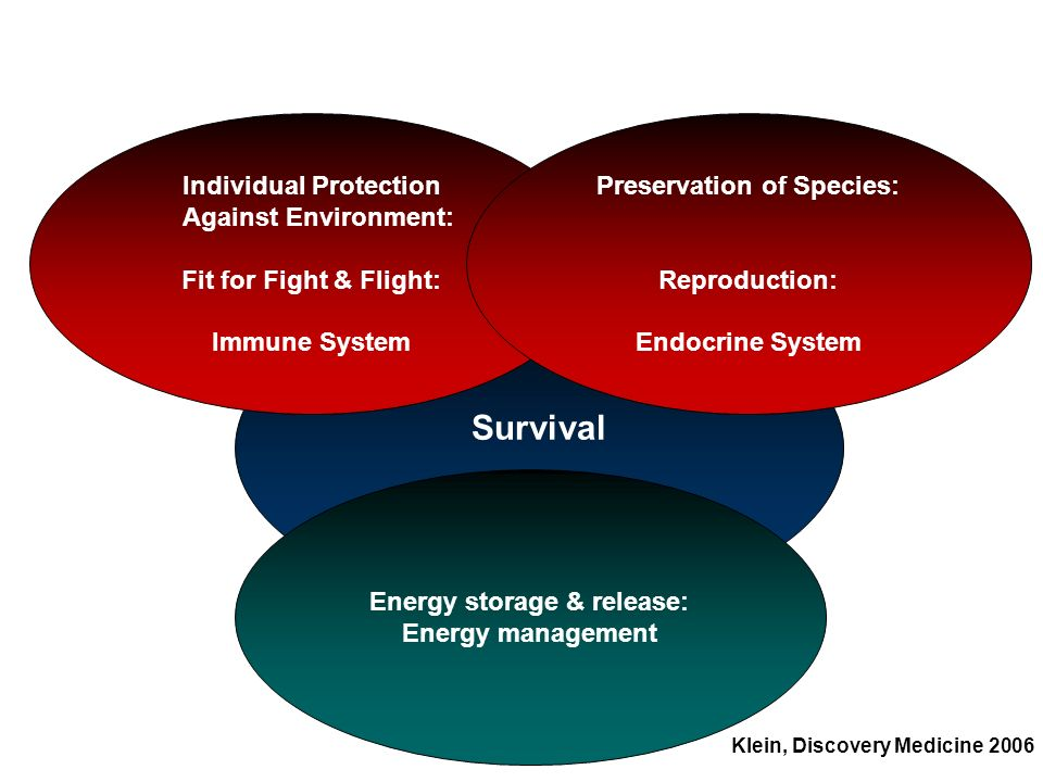 Survival Individual Protection Against Environment: Fit for Fight & Flight: Immune System Preservation of Species: Reproduction: Endocrine System Ener