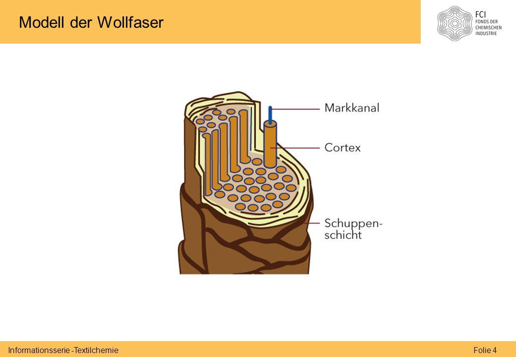 Folie 4Informationsserie -Textilchemie Modell der Wollfaser
