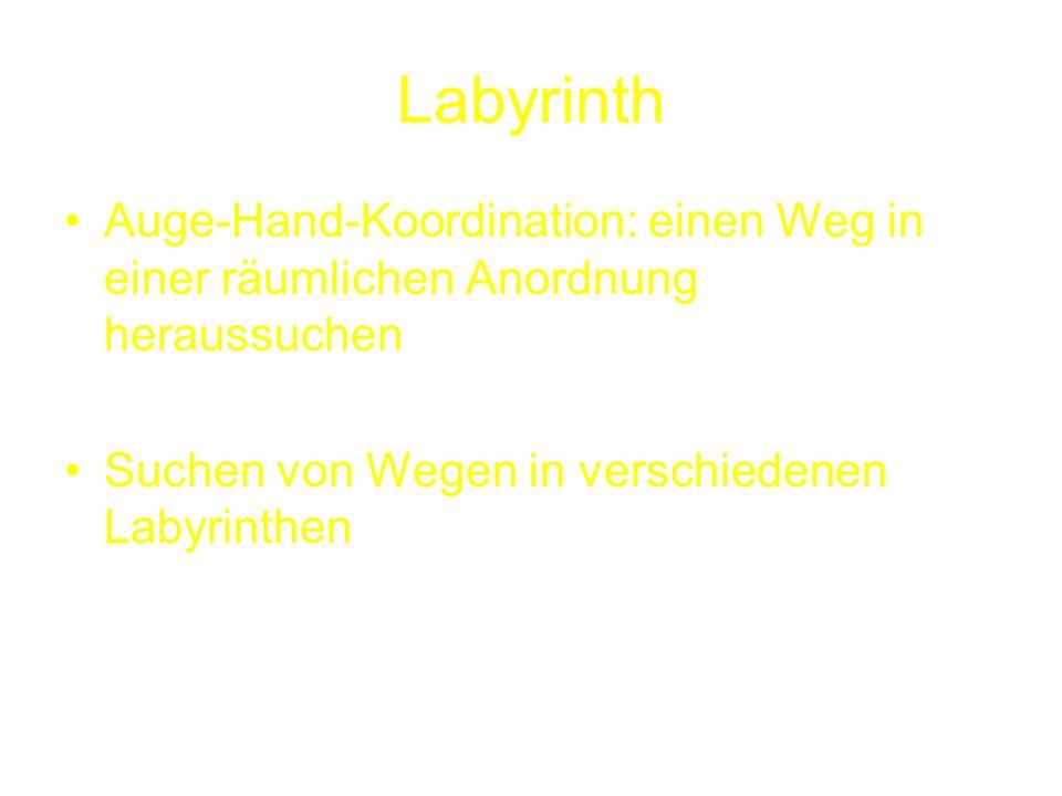 Labyrinth Auge-Hand-Koordination: einen Weg in einer räumlichen Anordnung heraussuchen Suchen von Wegen in verschiedenen Labyrinthen