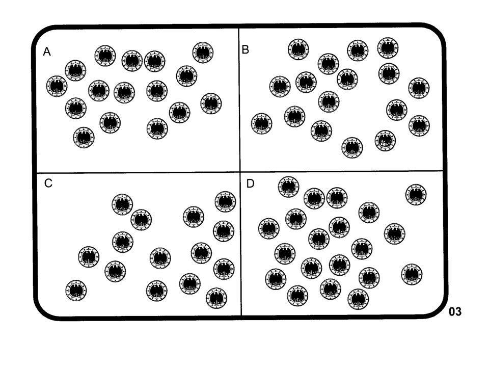 Zahlenstrahl Zahlbeziehungen als Längenbeziehungen denken (im Sinne des analogen Moduls) (visuelle) Größenbeziehungen zwischen Zahlen herstellen