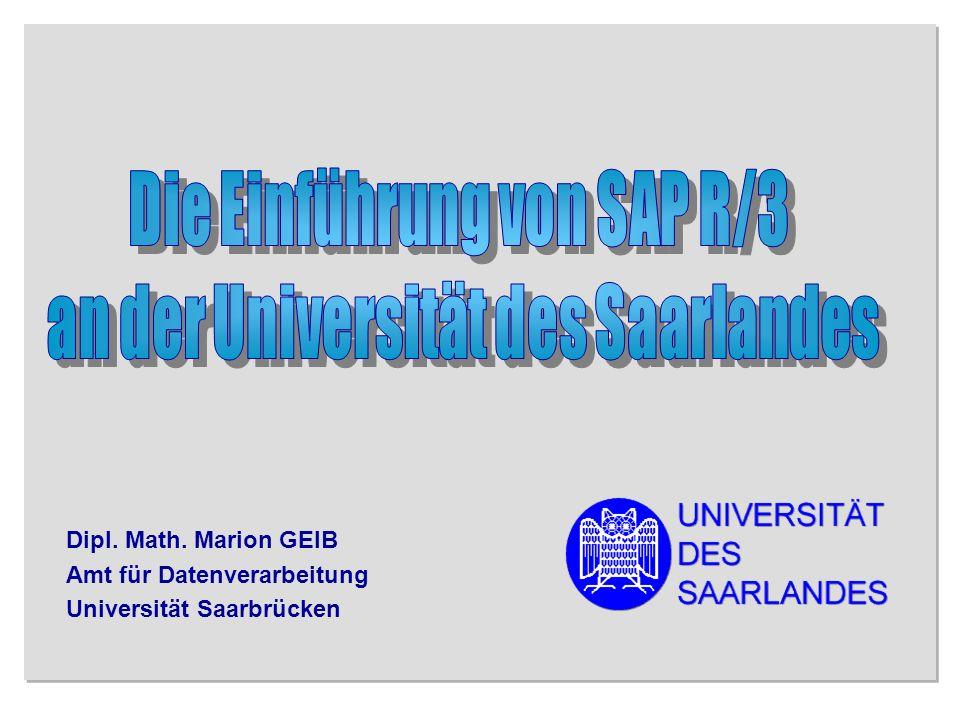 Universität des Saarlandes, CHE-Workshop 18.02.99 12/24 Anlagenbuchhaltung (AM) Studenten/Chipkarten (IQ Campus) Instandhaltung (PM) Personalmanagement (HR-PD)
