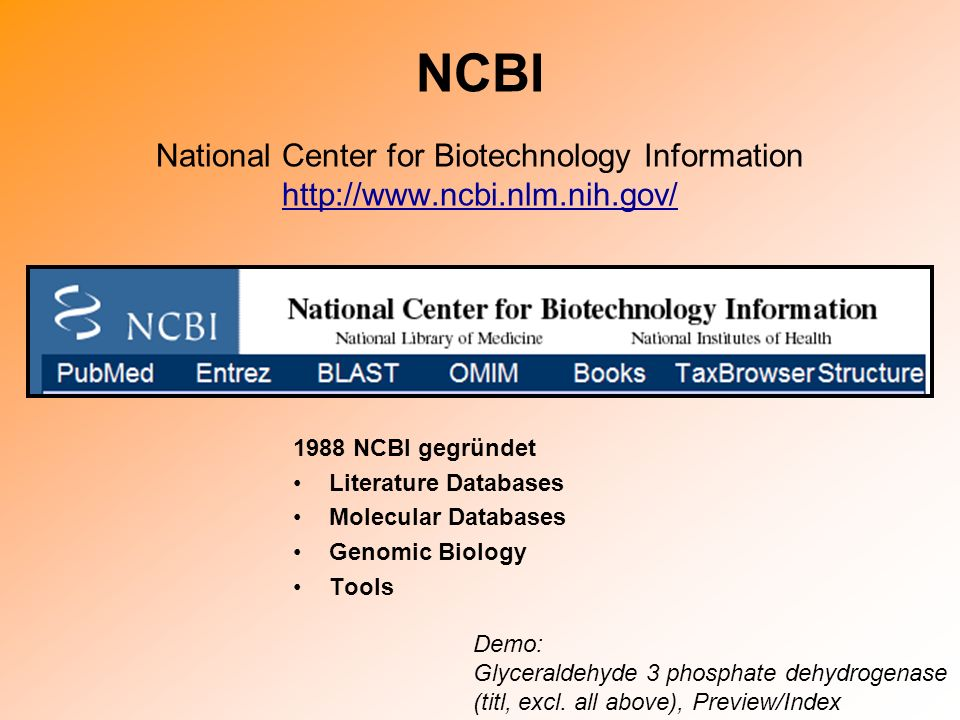 NCBI National Center for Biotechnology Information http://www.ncbi.nlm.nih.gov/ http://www.ncbi.nlm.nih.gov/ 1988 NCBI gegründet Literature Databases