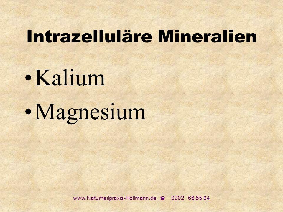 www.Naturheilpraxis-Hollmann.de 0202 66 55 64 Intrazelluläre Mineralien Kalium Magnesium