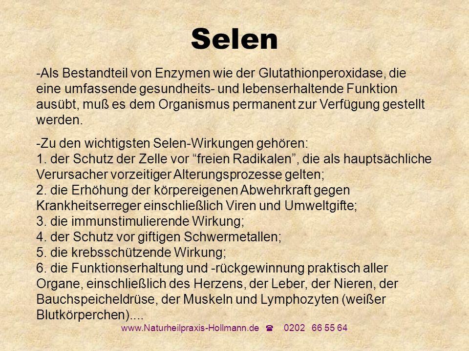 www.Naturheilpraxis-Hollmann.de 0202 66 55 64 Selen -Als Bestandteil von Enzymen wie der Glutathionperoxidase, die eine umfassende gesundheits- und le