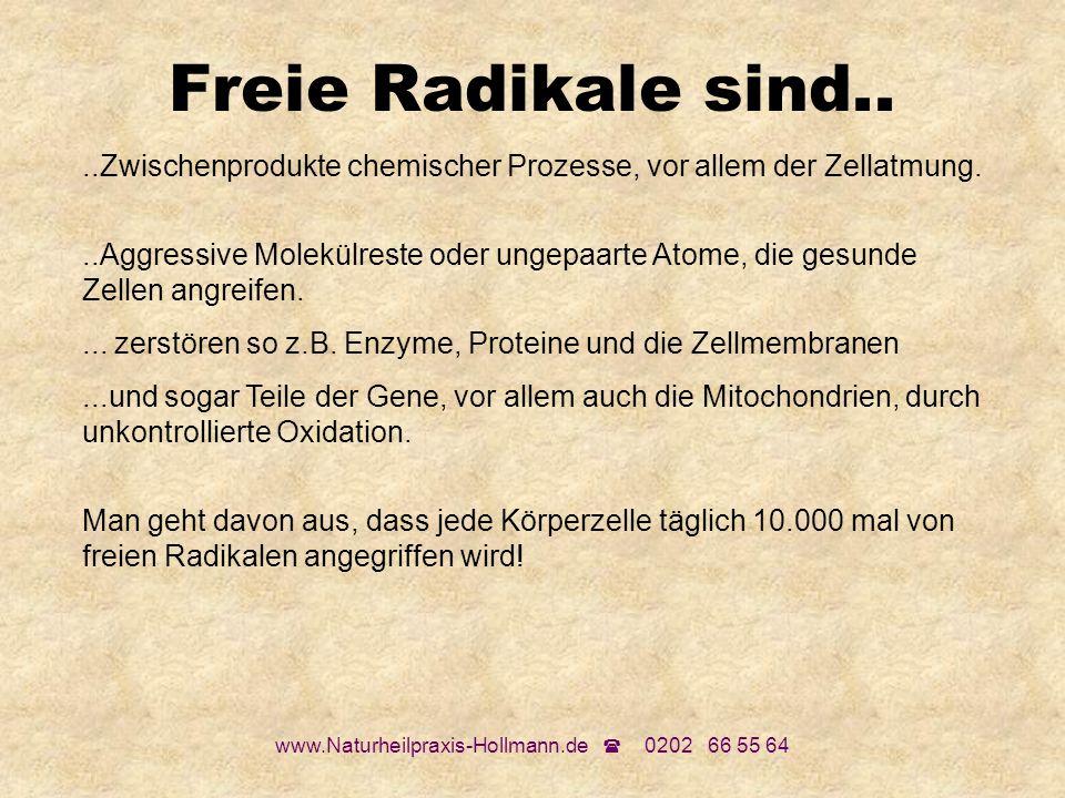 www.Naturheilpraxis-Hollmann.de 0202 66 55 64 Freie Radikale sind....Zwischenprodukte chemischer Prozesse, vor allem der Zellatmung...Aggressive Molek