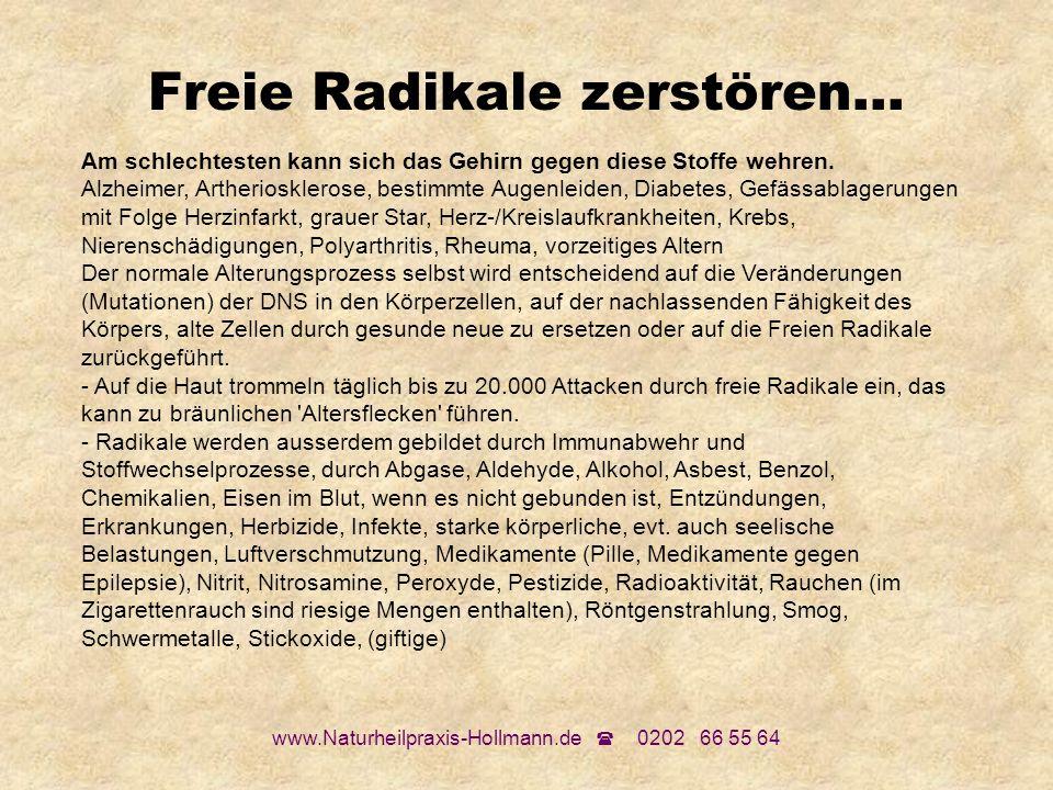 www.Naturheilpraxis-Hollmann.de 0202 66 55 64 Freie Radikale zerstören... Am schlechtesten kann sich das Gehirn gegen diese Stoffe wehren. Alzheimer,