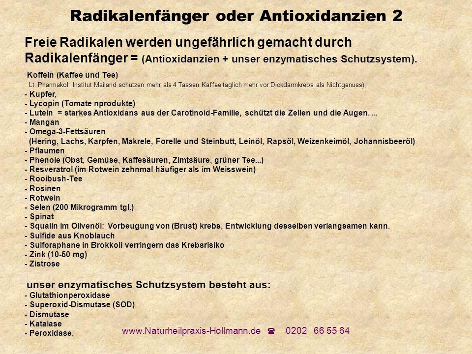 www.Naturheilpraxis-Hollmann.de 0202 66 55 64 Radikalenfänger oder Antioxidanzien 2 Freie Radikalen werden ungefährlich gemacht durch Radikalenfänger