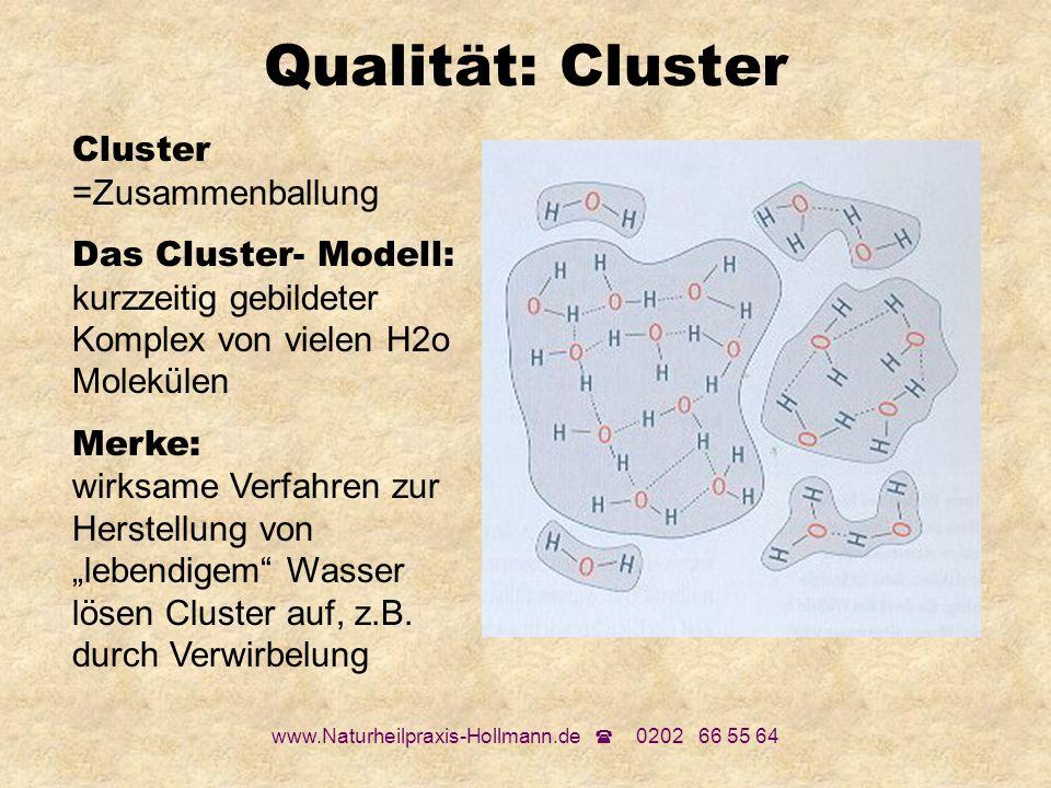 www.Naturheilpraxis-Hollmann.de 0202 66 55 64 Qualität: Cluster Cluster =Zusammenballung Das Cluster- Modell: kurzzeitig gebildeter Komplex von vielen