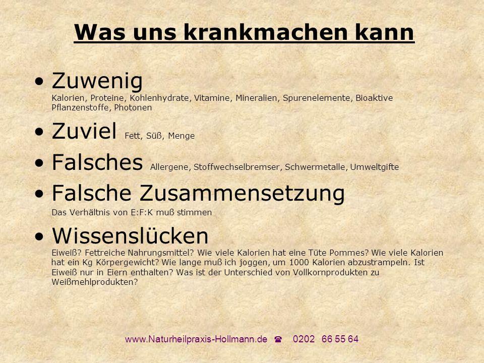 www.Naturheilpraxis-Hollmann.de 0202 66 55 64 Sinnvolle Ernährung: Was kann krankmachen: Zuviel...