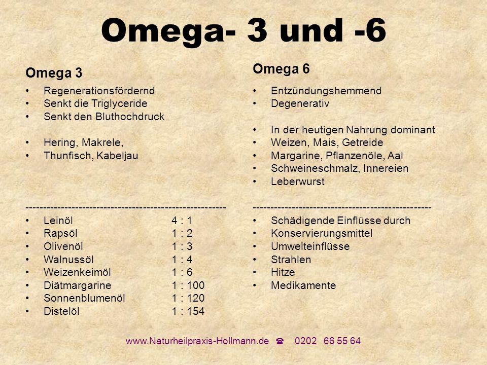 www.Naturheilpraxis-Hollmann.de 0202 66 55 64 Omega- 3 und -6 Omega 3 Regenerationsfördernd Senkt die Triglyceride Senkt den Bluthochdruck Hering, Mak