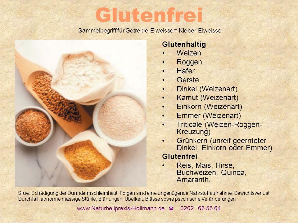 www.Naturheilpraxis-Hollmann.de 0202 66 55 64 Glutenfrei Sammelbegriff für Getreide-Eiweisse = Kleber-Eiweisse Glutenhaltig Weizen Roggen Hafer Gerste