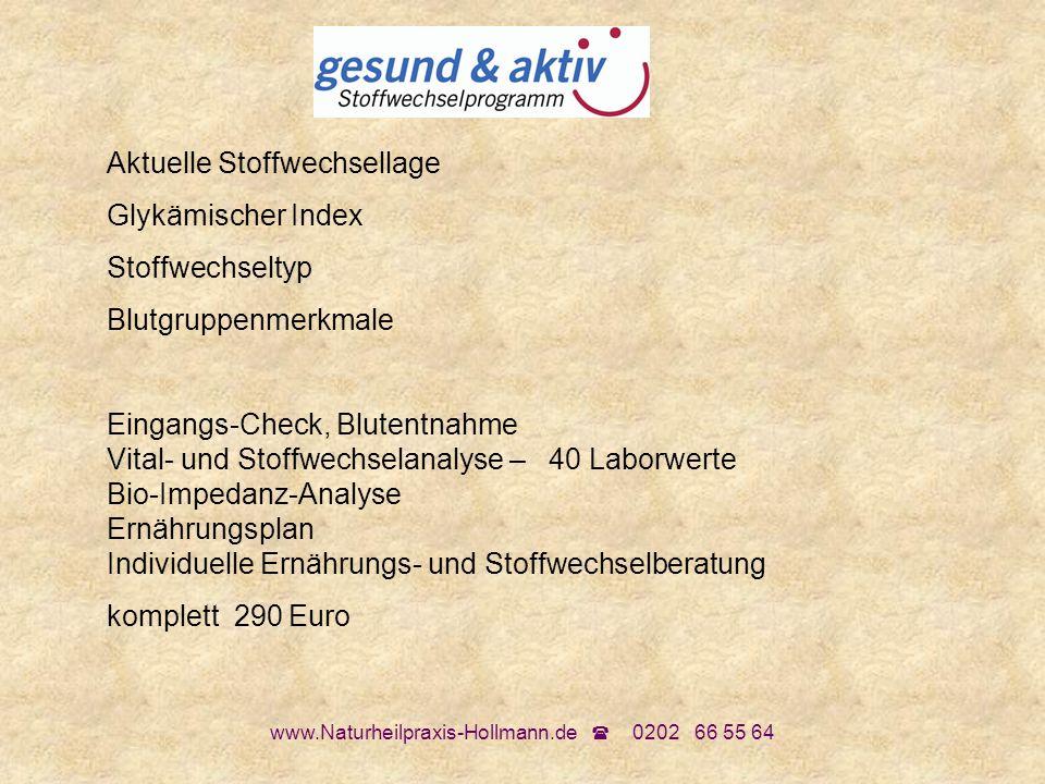 www.Naturheilpraxis-Hollmann.de 0202 66 55 64 Aktuelle Stoffwechsellage Glykämischer Index Stoffwechseltyp Blutgruppenmerkmale Eingangs-Check, Blutent