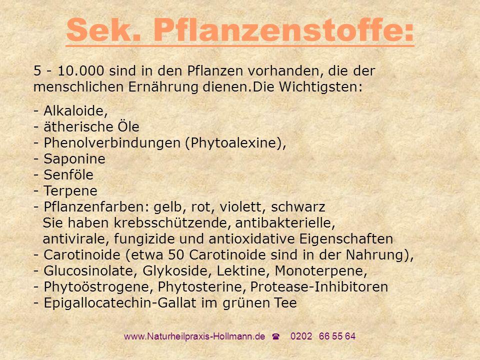 www.Naturheilpraxis-Hollmann.de 0202 66 55 64 Sek. Pflanzenstoffe: 5 - 10.000 sind in den Pflanzen vorhanden, die der menschlichen Ernährung dienen.Di