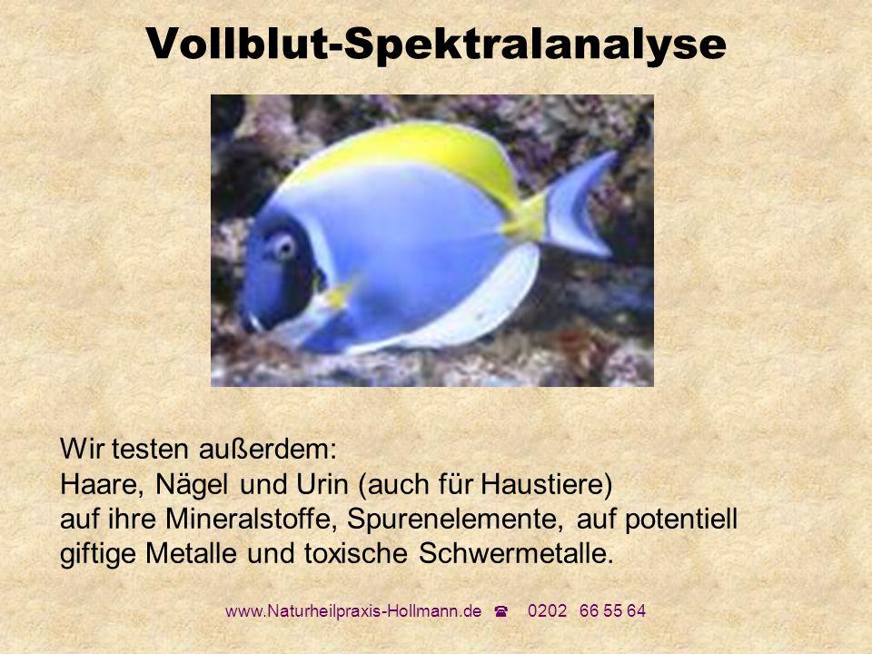 www.Naturheilpraxis-Hollmann.de 0202 66 55 64 Vollblut-Spektralanalyse Wir testen außerdem: Haare, Nägel und Urin (auch für Haustiere) auf ihre Minera