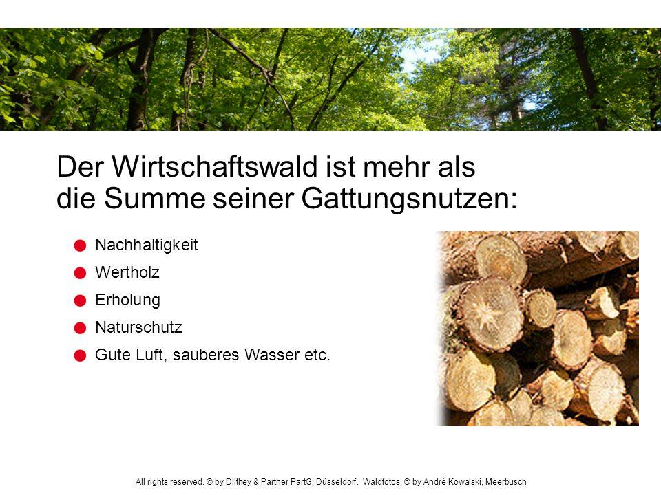 Der Wirtschaftswald ist mehr als die Summe seiner Gattungsnutzen: Erholung Wertholz Nachhaltigkeit Naturschutz Gute Luft, sauberes Wasser etc. All rig