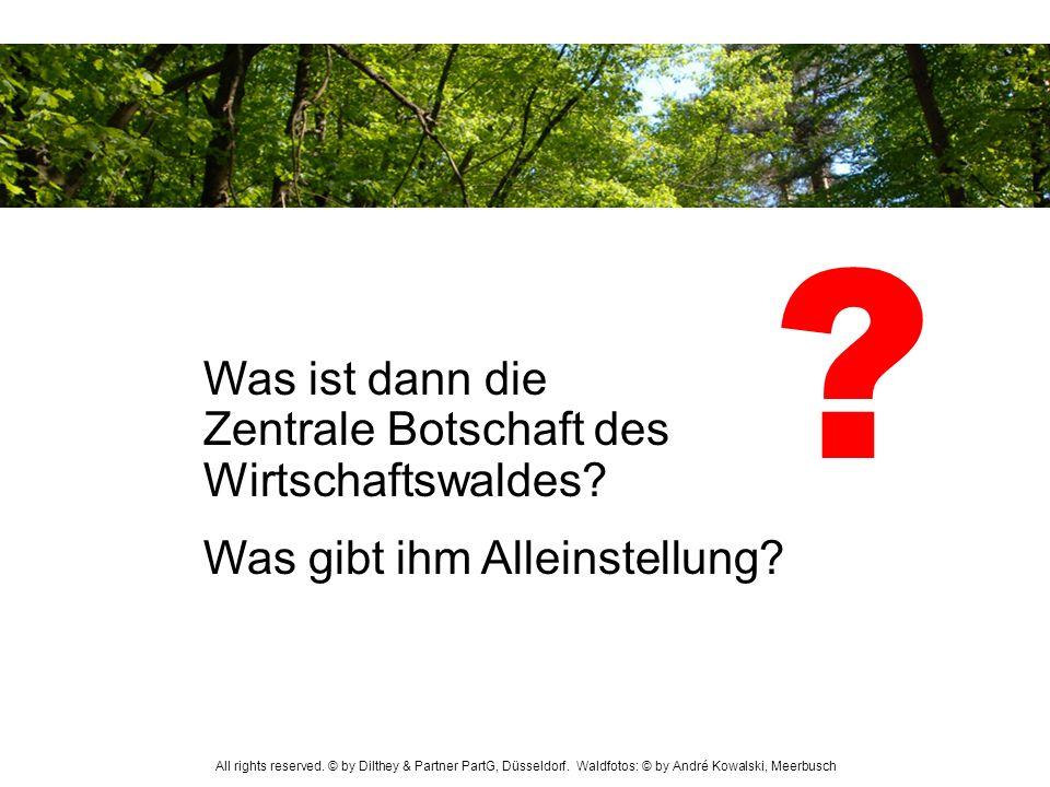 Was ist dann die Zentrale Botschaft des Wirtschaftswaldes? Was gibt ihm Alleinstellung? ? All rights reserved. © by Dilthey & Partner PartG, Düsseldor