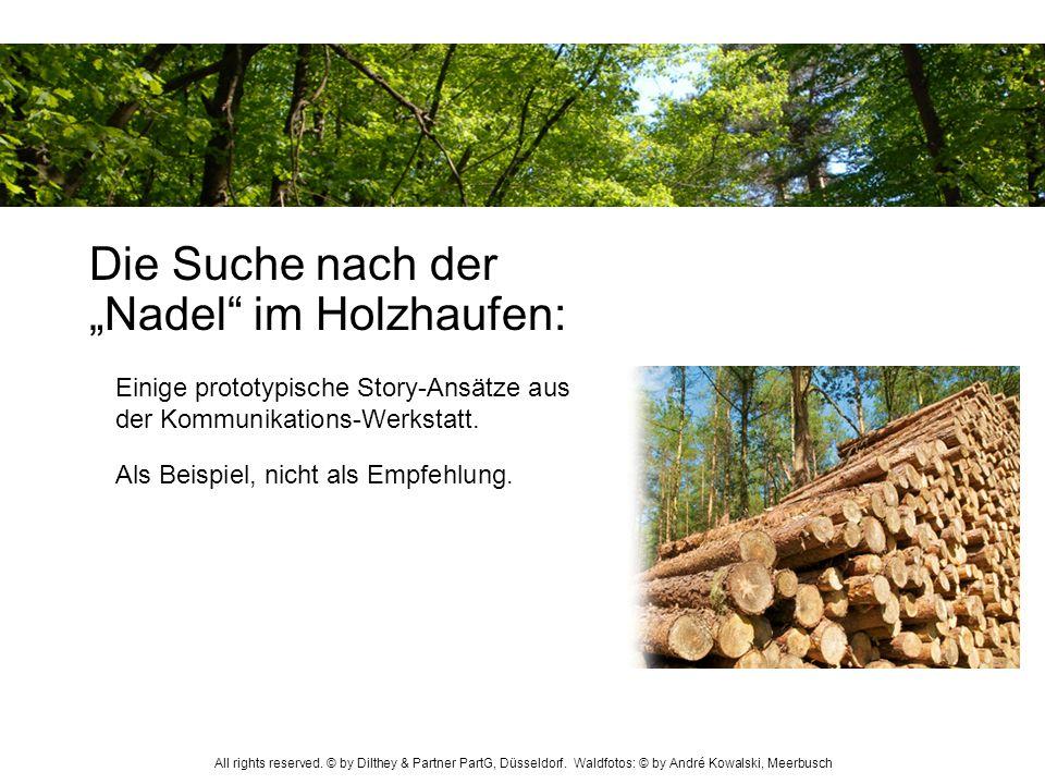Die Suche nach der Nadel im Holzhaufen: Als Beispiel, nicht als Empfehlung. Einige prototypische Story-Ansätze aus der Kommunikations-Werkstatt. All r