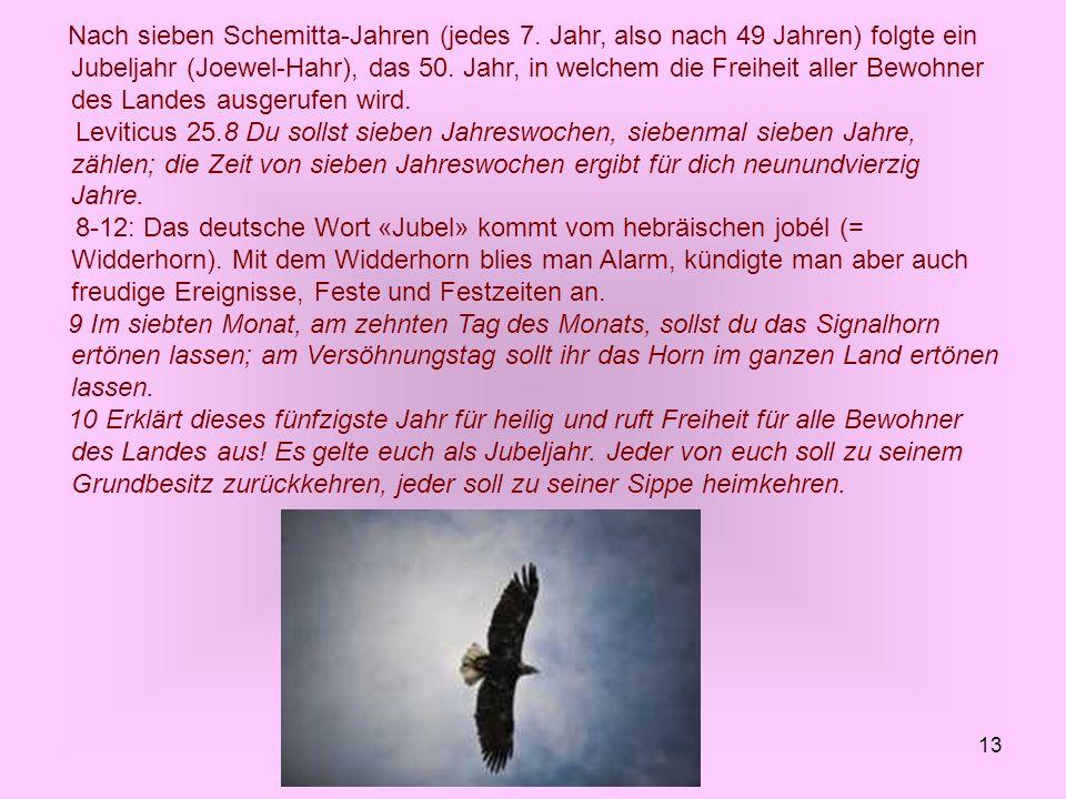13 Nach sieben Schemitta-Jahren (jedes 7. Jahr, also nach 49 Jahren) folgte ein Jubeljahr (Joewel-Hahr), das 50. Jahr, in welchem die Freiheit aller B