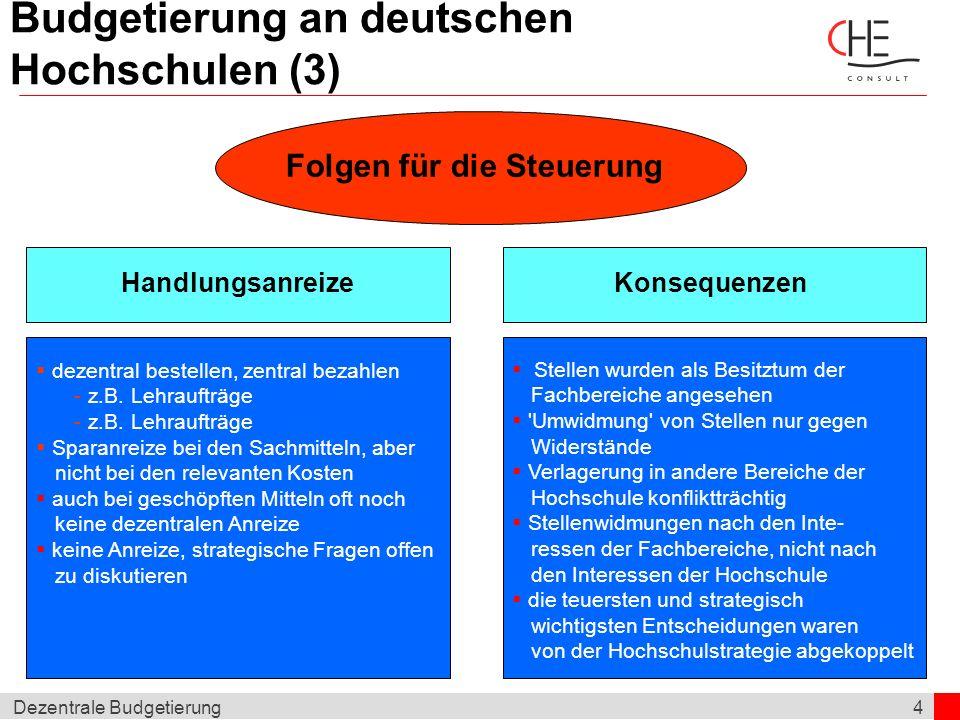 4Dezentrale Budgetierung Budgetierung an deutschen Hochschulen (3) Folgen für die Steuerung HandlungsanreizeKonsequenzen Stellen wurden als Besitztum