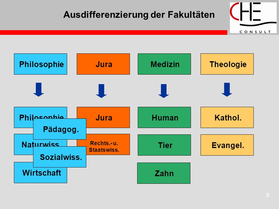 5 Ausdifferenzierung der Fakultäten Theologie Philosophie JuraMedizinKathol. Evangel. Human Tier Zahn Jura Rechts.- u. Staatswiss. Philosophie Wirtsch