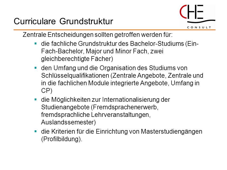 Curriculare Grundstruktur Zentrale Entscheidungen sollten getroffen werden für: die fachliche Grundstruktur des Bachelor-Studiums (Ein- Fach-Bachelor,