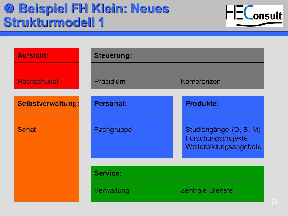 24 Beispiel FH Klein: Neues Strukturmodell 1 Beispiel FH Klein: Neues Strukturmodell 1 Steuerung: PräsidiumKonferenzen Personal: Fachgruppe Service: V