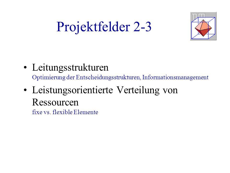 Projektfelder 2-3 Leitungsstrukturen Optimierung der Entscheidungsstrukturen, Informationsmanagement Leistungsorientierte Verteilung von Ressourcen fi
