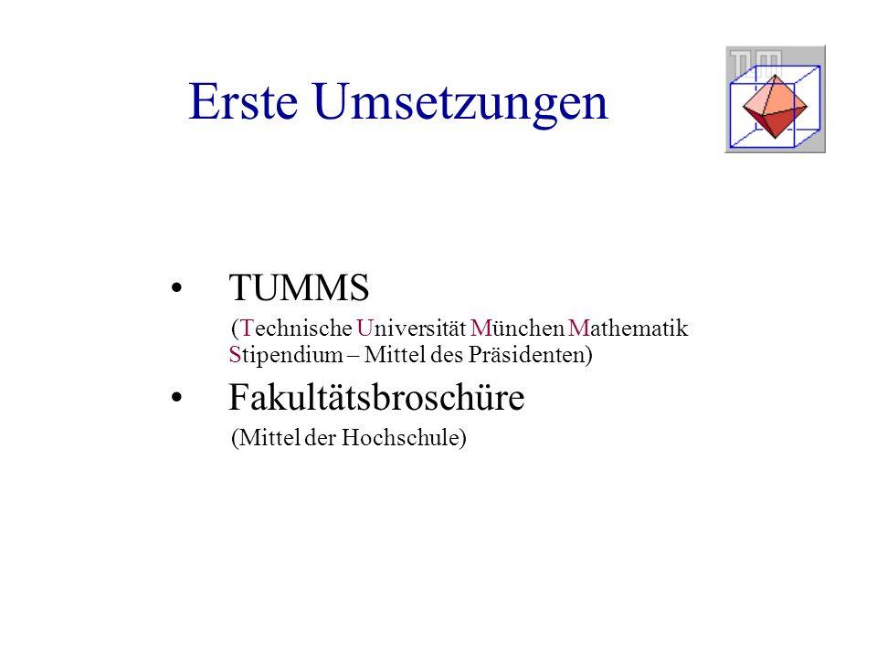 Erste Umsetzungen TUMMS (Technische Universität München Mathematik Stipendium – Mittel des Präsidenten) Fakultätsbroschüre (Mittel der Hochschule)