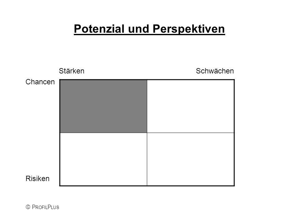P ROFIL P LUS Potenzial und Perspektiven Stärken Schwächen Chancen Risiken