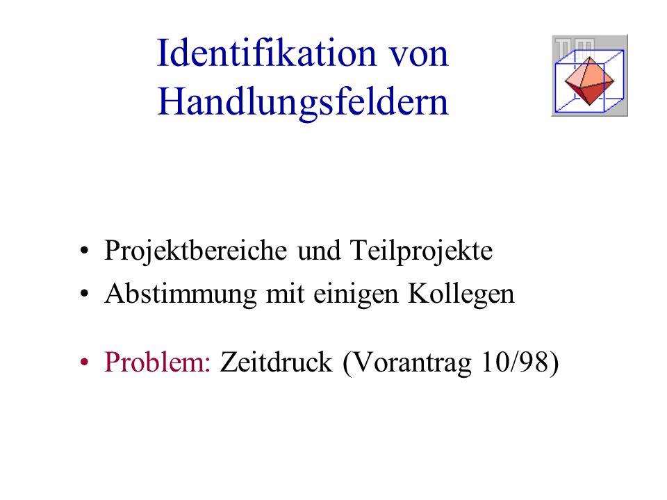 Identifikation von Handlungsfeldern Projektbereiche und Teilprojekte Abstimmung mit einigen Kollegen Problem: Zeitdruck (Vorantrag 10/98)
