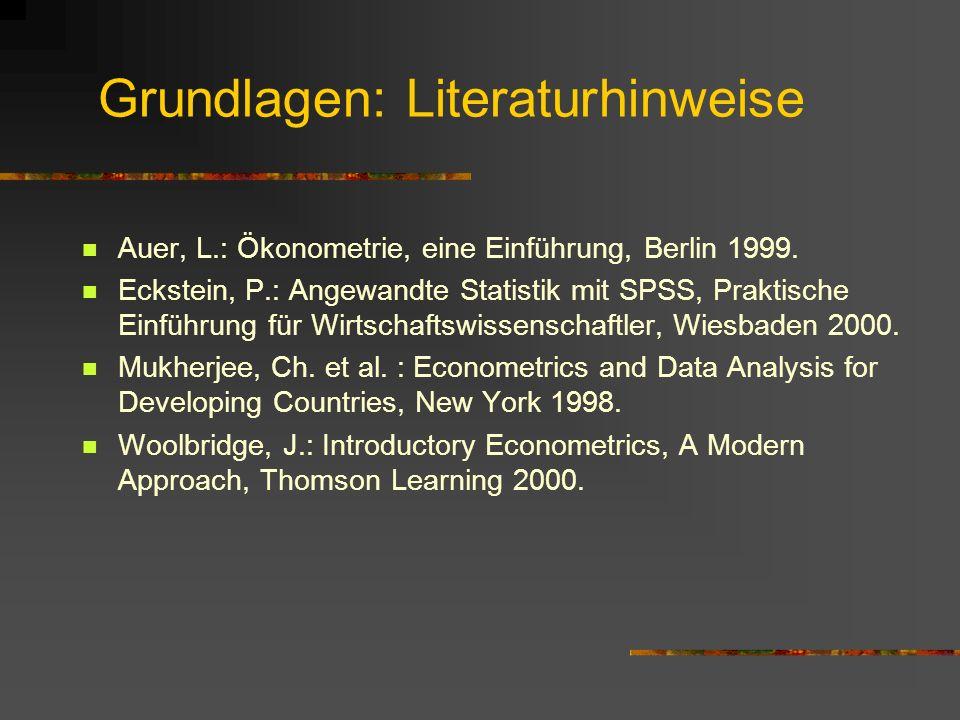 Grundlagen: Literaturhinweise Auer, L.: Ökonometrie, eine Einführung, Berlin 1999. Eckstein, P.: Angewandte Statistik mit SPSS, Praktische Einführung