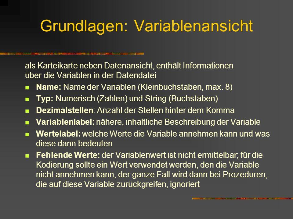 Grundlagen: Variablenansicht als Karteikarte neben Datenansicht, enthält Informationen über die Variablen in der Datendatei Name: Name der Variablen (